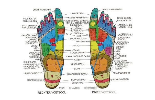 voet_reflex_2